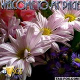 welcometomypagecomment001