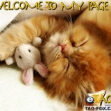 welcometomypagecomment131