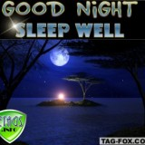goodnightcomment005