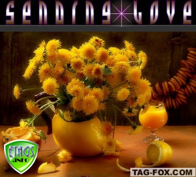 showinglovecomment272.jpg