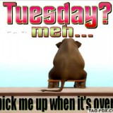 tuesdaycomment332