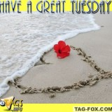 tuesdaycomment428