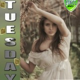 tuesdaycomment430