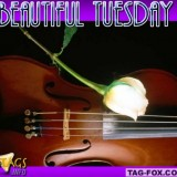 tuesdaycomment462