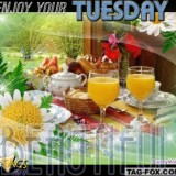 tuesdaycomment477