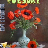 tuesdaycomment523