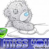 missyoucomment231
