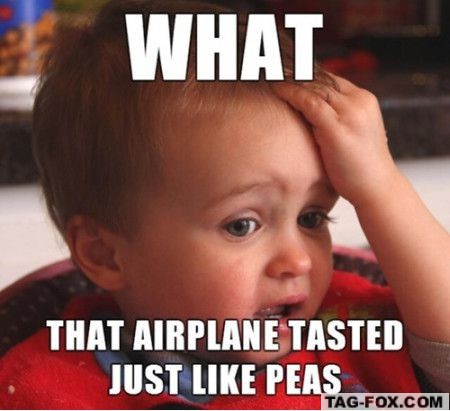 airplanetasteslikepeas.jpg