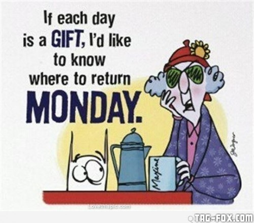 Funny-Monday-today-quote-message.jpg