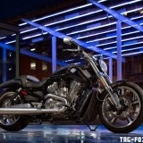 V-Rod-Muscle