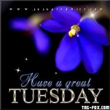 190004-Have-A-Great-Tuesday