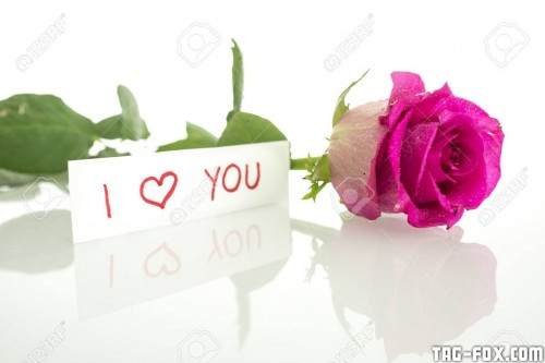 25082478-handwritten-i-love-you-message-with-a-single-fresh-beautiful-pink-rose-with-leaves-lying-on-a-reflec5043f213ad473fb8.jpg