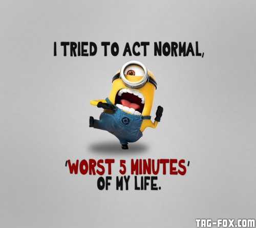 Crazy_Minion-wallpaper-10471990a353321a100d1280.jpg