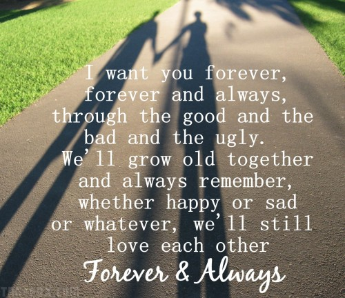 Forever-And-Always-PC88090f6b9b7a958e7980.jpg