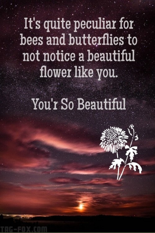 you-are-most-beautiful-girl-quotes8256db24390cb55a.jpg