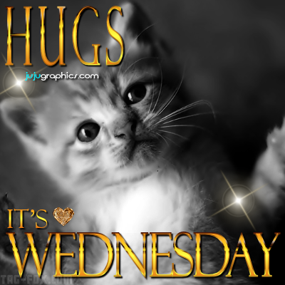 Hugs-its-Wednesday-159866581262de556.png