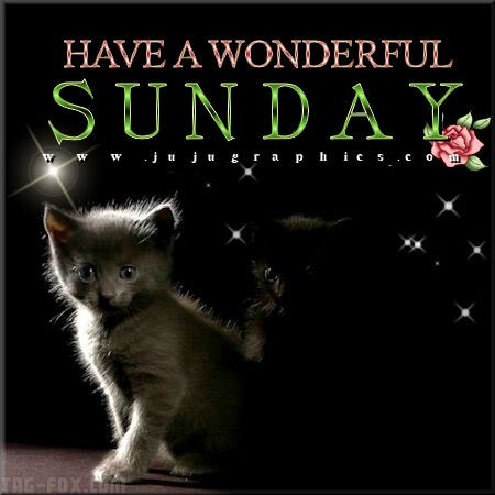 Have-a-wonderful-Sunday-1702e6665bd964c369.jpg