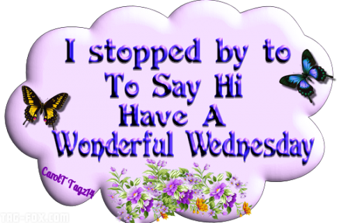 240341-I-Stopped-By-To-Say-Hi-Have-A-Wonderful-Wednesday37fe8392ce74a432.png