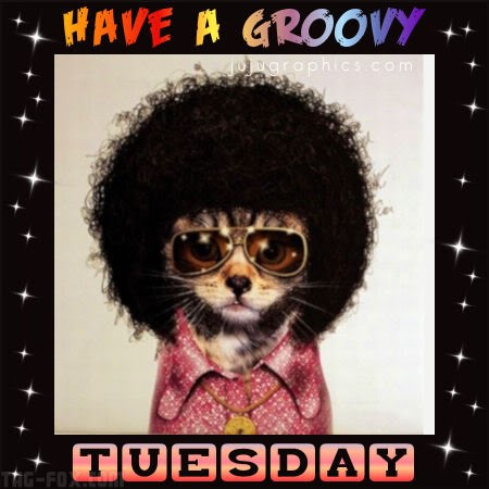 Have-a-groovy-Tuesday4c4291c6a8f230db.jpg
