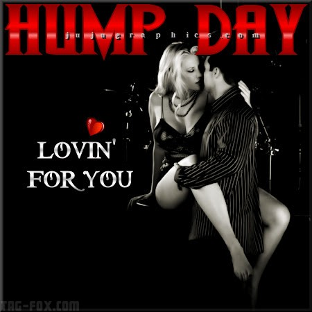 Hump-day-lovin-for-you-2fd191b0ae9ccdae1.jpg