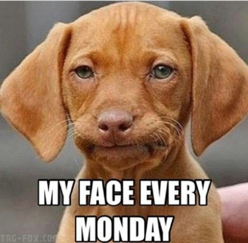My-face-every-monday-600x589ac38dec7650b02a3.jpg