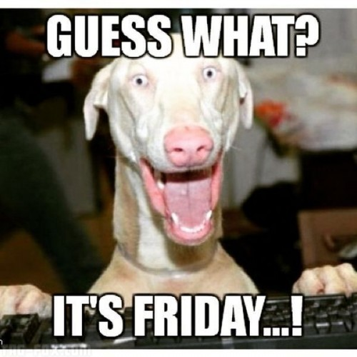 Guess-what-its-friday427dbf7c50f4bd45.jpg