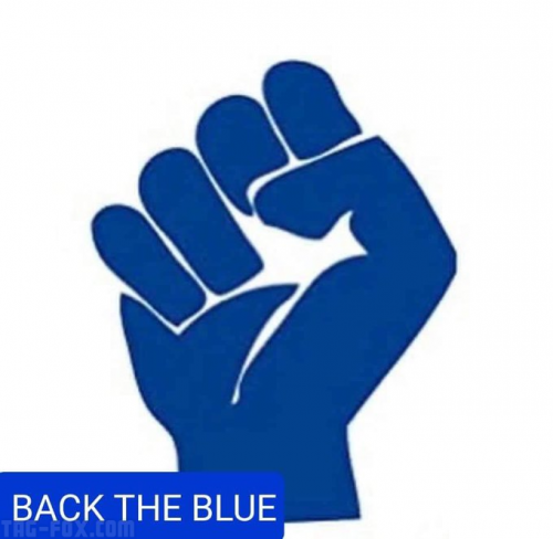 Backtheblue980cf770c7e2f302.png